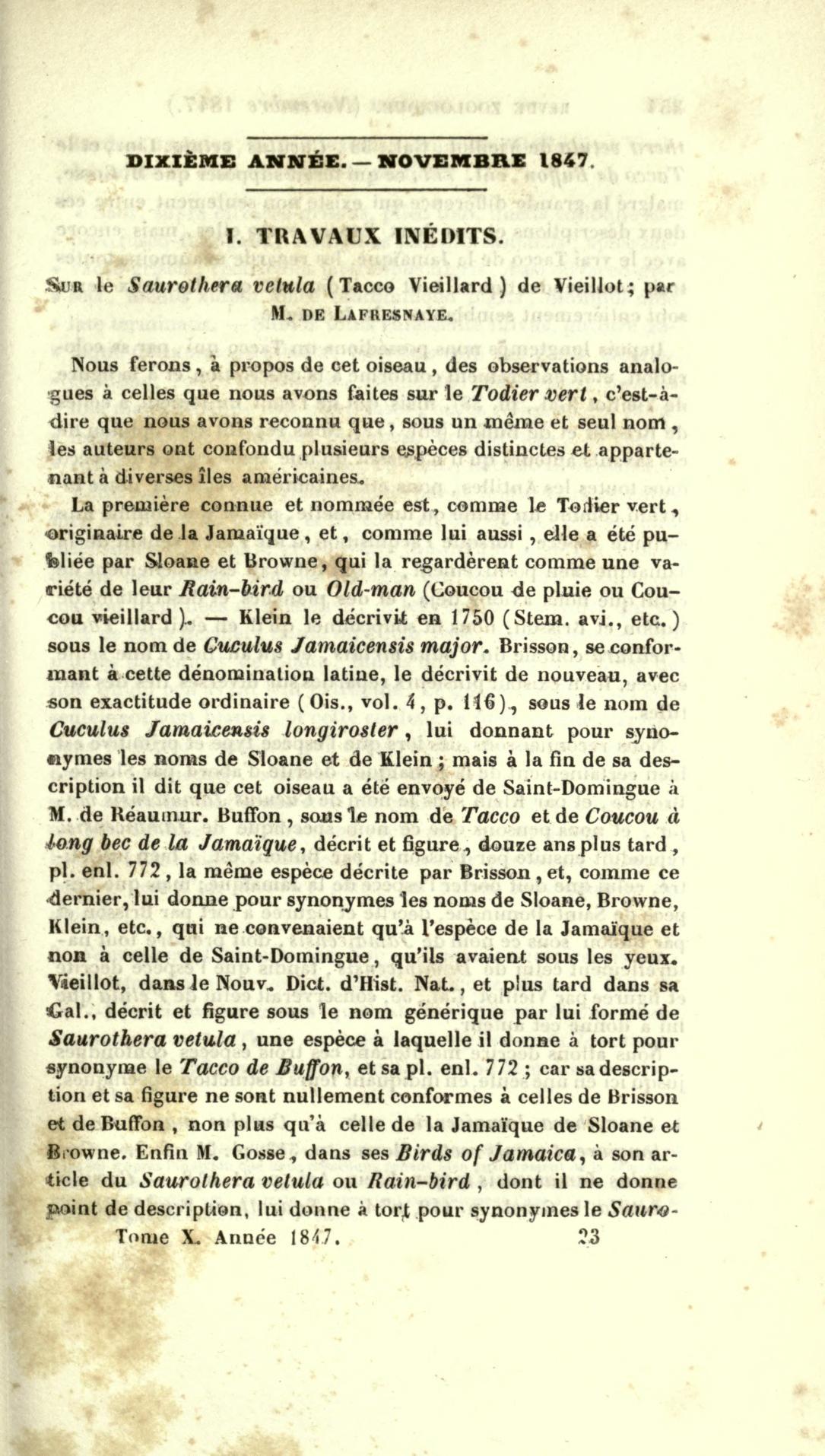 I. Travaux Inedits. Sur le Saurothera vetula (Tacco Vieillard) de Vieillot